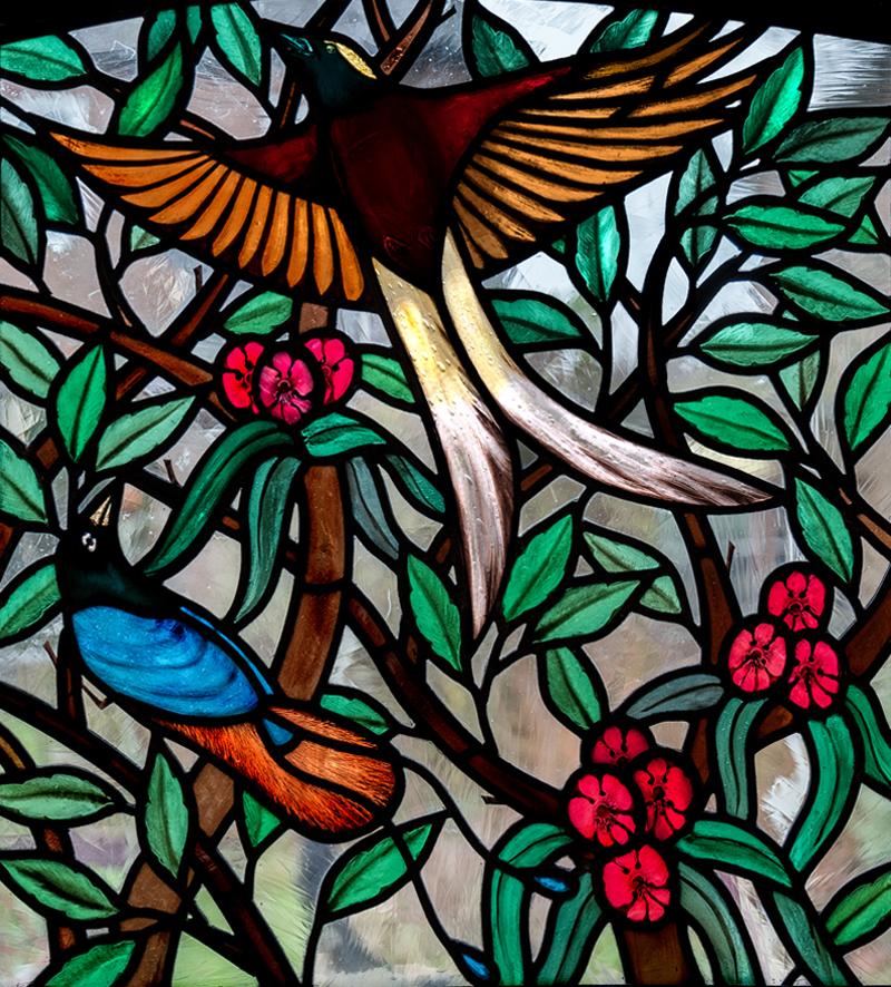 Rachel_Mulligan_Birds-of-Paradise_2