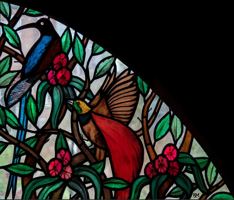 Rachel_Mulligan_Birds-of-Paradise_3